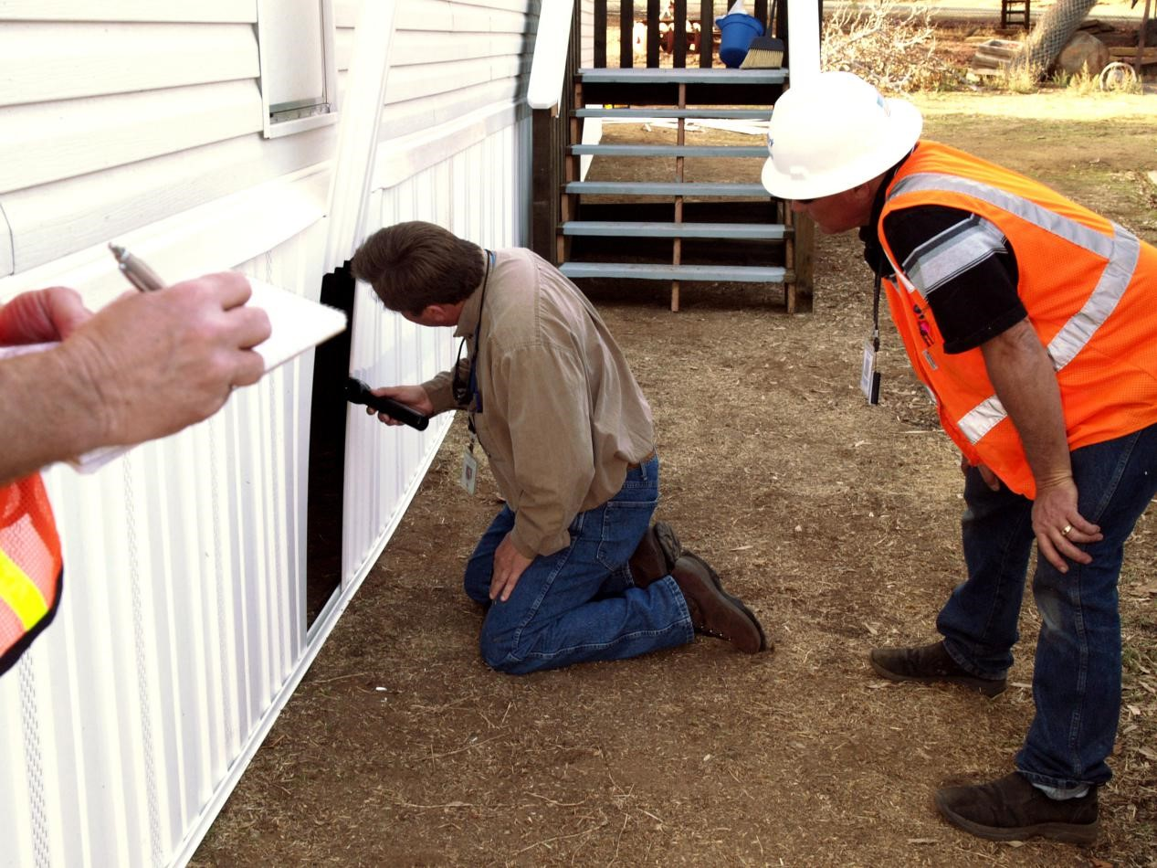 What You Need to Know About Pest Inspection